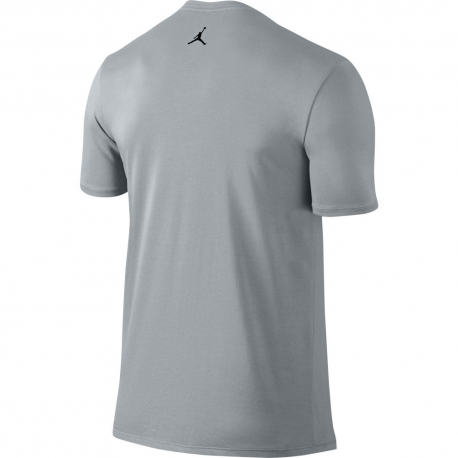 Air Jordan Tee-shirt Wingspan Gris