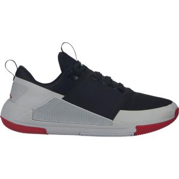 Jordan Trainer Pro 2 Noir/Gris/Rouge
