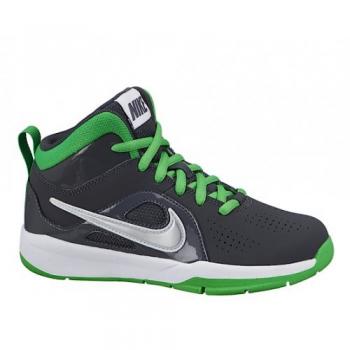 Nike Team Hustle D6 (PS/GS) Gris/vert