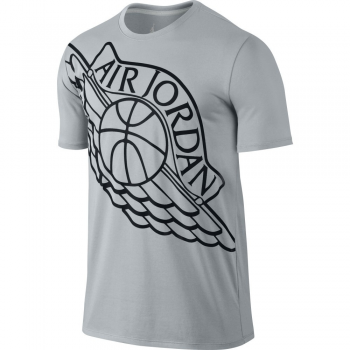 Air Jordan Tee-shirt Wingspan Gris