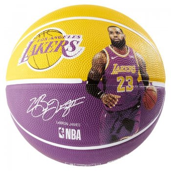 Spalding Ballon Lebron James Lakers